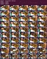 052 - Zoo Scat