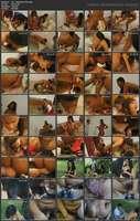 071 - Animal Sex Farm