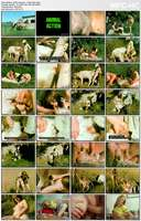 Bodil Joensen - Animal Sex Pornstars - Farm Sex