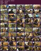 062 - Zoo Scat