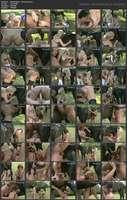 Animal Desire - Horse Orgy